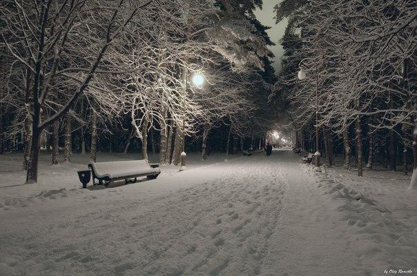 Зима в парке Челюскинцев.