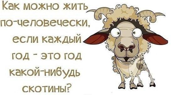 http://cs628617.vk.me/v628617492/43579/sNFP8NmeXhk.jpg