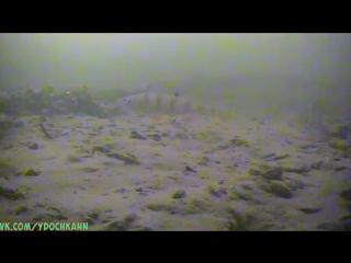 Подводная видео-камера ЯЗЬ-52 магазин удочка г.Бор