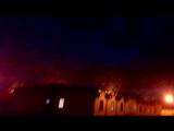 Фермеры с юга России выкладывают видео стай саранчи, которые атаковали российский регион