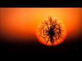 Paji - Mandala (Original Mix)