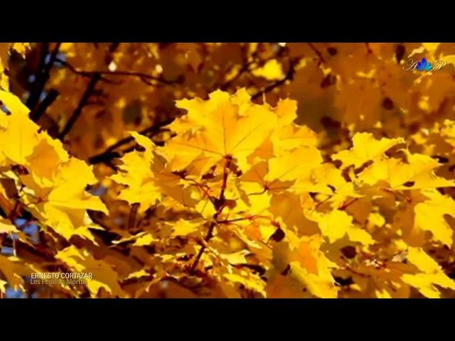 ERNESTO CORTAZAR - Les Feuilles Mortes(Autumn Leaves)