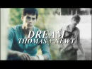 Thomas Newt || Everything's a mess