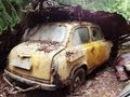 Забытые автомобили часть 2 / Abandoned Russian cars