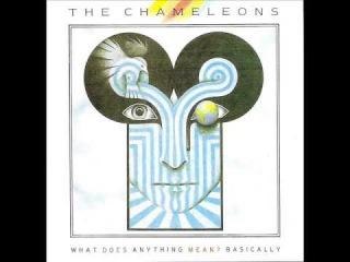 THE CHAMELEONS - What Does Anything Mean? Basically (Full Album)