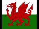 The Black Mountain Male Chorus (Corws Meibion y Mynydd Du) - Calon Lân