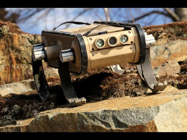 RHex Rough Terrain Robot