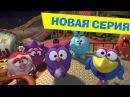 Смешарики ПИН-код - Золотое сечение HD Новый мультфильм!