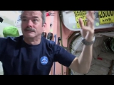 How To Make A Peanut Butter and Honey Sandwich In Space _ Video