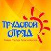 Трудовой отряд Главы города Красноярска (ТОГГ)