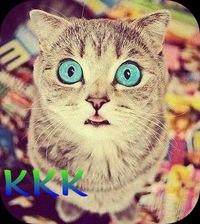 кот крутой фото