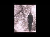 Nick Drake - Fly