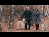 «Последняя ночь» (2015): Трейлер №2 / http://www.kinopoisk.ru/film/843656/