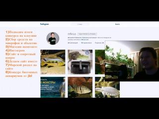 Отзыв с канала MFKRUS о итогах отборочного этапа конкурса дизайна биотопных аквариумов 2015