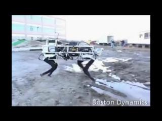 Путину показали национального боевого робота - аВАТАра
