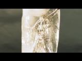 Delain - Frozen