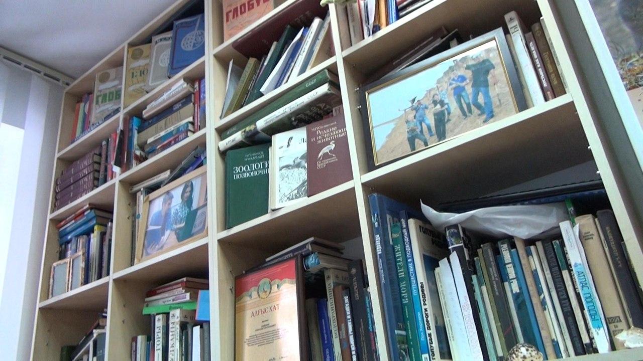 Библиотека ПавГео
