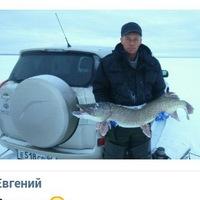 Анкета Вячеслав Белкин