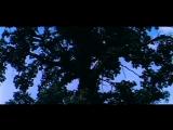 Высоцкий-Баллада о времени-Стрелы Робин Гуда