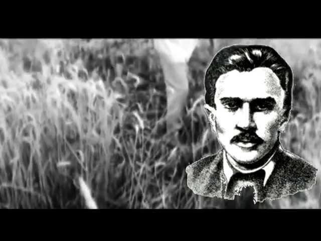 Розстріляне Відродження Микола Григорович Хвильовий