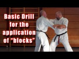 "Practical Kata Bunkai: basic drill for the application of ""blocks"""