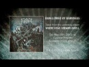 FERAL - Swallowed By Darkness (Official Lyric Video)