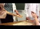 Plexus brachialis Плечевое сплетение