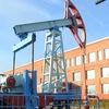 ЛНТ \ Лянторский нефтяной техникум (филиал) ФГБО
