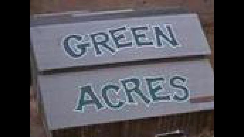 Зелёные Просторы, опенинг