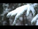 Enya - And Winter Came ...