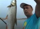 Ловля жереха и судака с бомбардой Классная рыбалка