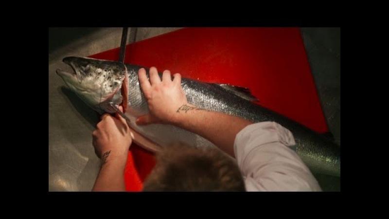 Как разделать тушу лосося на филе. Мастер-класс от шеф-повара