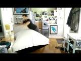 Гигантская подушка-пердушка