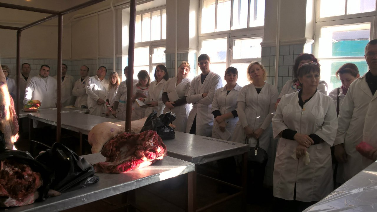 Ветврачи Ростовской области не допустят попадания некачественных продуктов на новогодние столы