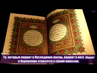 Самир аль-Умран. Сура 6 Аль-Анам (Скот)