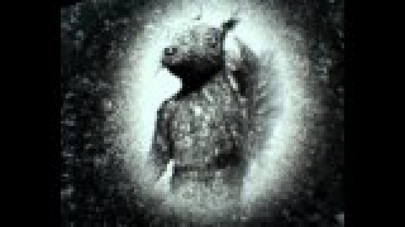 Адская белочка 2: Толян-братан