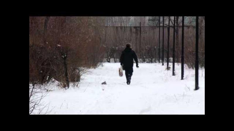Петропавловск Белка налетчица не жалеет ни своих ни чужих 1