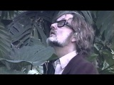 Pilooski Feat. Jarvis Cocker