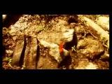 Keny Arkana - La rage (russian subtitles)
