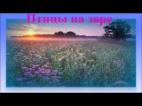 Несравненное Пение Птиц &amp Заря  Beautiful Dawn Birds Singing