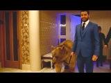 Грандиозная VIP вечеринка в стиле Волк с Уолл-стрит в гостях у Нарека Сираканяна.