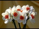 Цветы из бисера. Урок бисероплетения. Нарцисс