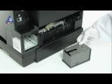 Чистка памперса для Epson WorkForce Pro на примере WP-4540