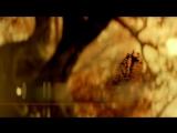 Хроники Шаннары/The Shannara Chronicles (2016 - ...) Трейлер (сезон 1; русский язык)