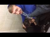 В туалете института (ЖЕСТКОЕ ПОРНО,ДОМАШНЕЕ,ИНЦЕСТ,XXX,Секс,mom and son,teen,bra