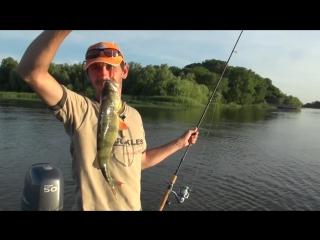 Ловля хищника летом.Летняя рыбалка на щуку,окуня,судака и жереха