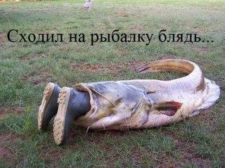 фото приколы про рыбалку и охоту