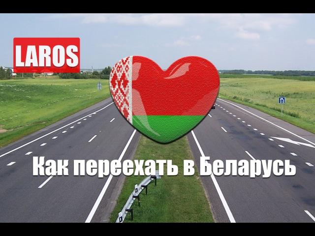 Laros Live - Как переехать в Беларусь