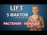 5 фактов от Кати Павликовой. САМЫЕ ОПАСНЫЕ ДОМАШНИЕ РАСТЕНИЯ.