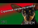 Странные сегменты ютюба 1 - Вязка собак